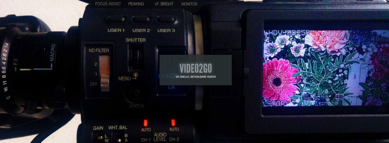 Screenshot van website Video2Go